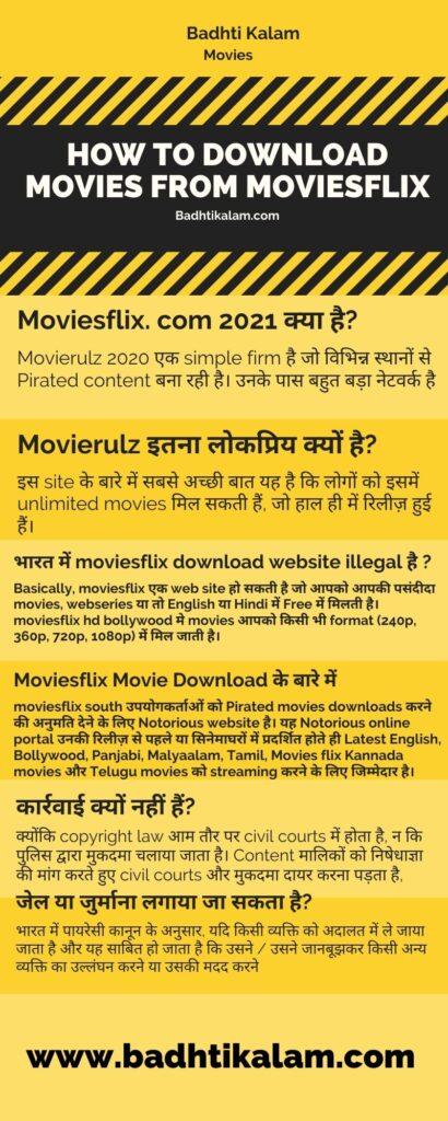 Moviesflix Infograph